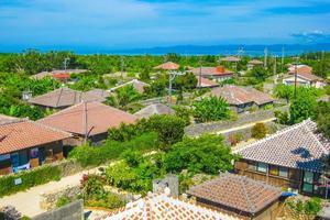 沖縄で珍しい体験をしよう!オススメアクティビティ8選の画像