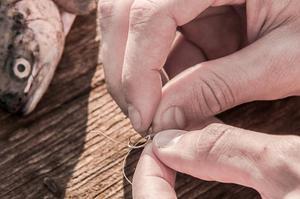 釣り初心者が押さえたい餌の付け方のポイントと苦手攻略法の画像