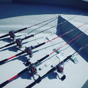 釣り初心者さんは「万能竿」を選ぶのがおすすめ!の画像