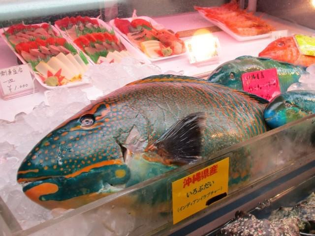 okinawa-fish.jpg